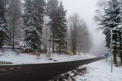 Κενός χειμερινός δρόμος με το χιόνι στο δάσος στοκ φωτογραφίες
