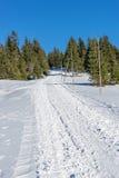Κενός χιονισμένος δρόμος στο χειμερινό τοπίο στα γιγαντιαία βουνά Στοκ εικόνες με δικαίωμα ελεύθερης χρήσης