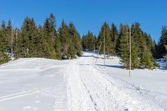 Κενός χιονισμένος δρόμος στο χειμερινό τοπίο στα γιγαντιαία βουνά Στοκ Φωτογραφία