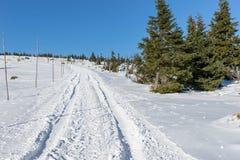Κενός χιονισμένος δρόμος στο χειμερινό τοπίο στα γιγαντιαία βουνά Στοκ Εικόνες