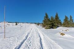 Κενός χιονισμένος δρόμος στο χειμερινό τοπίο στα γιγαντιαία βουνά Στοκ εικόνα με δικαίωμα ελεύθερης χρήσης