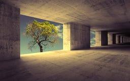 Κενό αφηρημένο συγκεκριμένο εσωτερικό με τον ουρανό και το πράσινο δέντρο Στοκ φωτογραφία με δικαίωμα ελεύθερης χρήσης