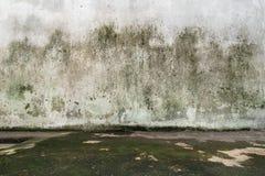Κενό δωμάτιο με το συμπαγή τοίχο και το πάτωμα Στοκ Εικόνες