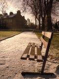 Κενό δημόσιο κάθισμα σε ένα πάρκο ένα χειμερινό πρωί στοκ εικόνες με δικαίωμα ελεύθερης χρήσης