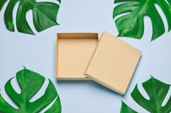 Κενό κιβώτιο δώρων που ανοίγουν στο μπλε ξύλινο υπόβαθρο με τα πράσινα φύλλα Στοκ εικόνες με δικαίωμα ελεύθερης χρήσης