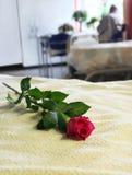 κενό νοσοκομείο σπορεί&ome Στοκ φωτογραφία με δικαίωμα ελεύθερης χρήσης