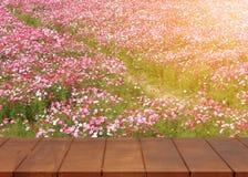 Κενό ξύλινο πάτωμα Υπόβαθρο λουλουδιών κόσμου στοκ φωτογραφίες με δικαίωμα ελεύθερης χρήσης
