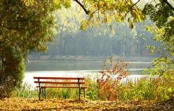 κενό πάρκο πάγκων ξύλινο Στοκ Εικόνες