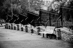 κενό πάρκο πάγκων Στοκ Εικόνες