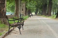κενό πάρκο πάγκων Στοκ Φωτογραφίες