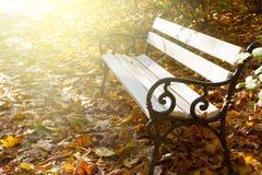 Κενό πάρκο φθινοπώρου πάγκων Στοκ Εικόνες
