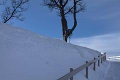 Κενό παγωμένο οδικό να ανεβεί στροφής με το nude δέντρο Στοκ Εικόνες