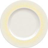 Κενό πιάτο αργίλου πορσελάνης με το διακοσμητικό πλαίσιο Στοκ εικόνες με δικαίωμα ελεύθερης χρήσης