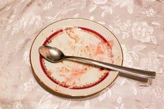 Κενό πιάτο μετά από το torte Στοκ Εικόνες