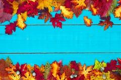 Κενό σημάδι φθινοπώρου με τα ζωηρόχρωμα σύνορα φύλλων στοκ εικόνα