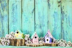 Κενό σημάδι με τα ζωηρόχρωμα birdhouses και τα λουλούδια στοκ εικόνα
