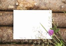 Κενό φύλλο εγγράφου στο ξύλινο υπόβαθρο κούτσουρων με τα άγρια λουλούδια Στοκ φωτογραφίες με δικαίωμα ελεύθερης χρήσης