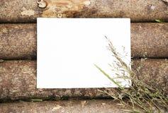 Κενό φύλλο εγγράφου στο ξύλινο υπόβαθρο κούτσουρων με τα άγρια λουλούδια Στοκ Εικόνα