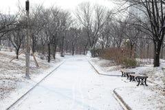 Κενό χιονώδες πάρκο μια κρύα ημέρα Στοκ φωτογραφία με δικαίωμα ελεύθερης χρήσης