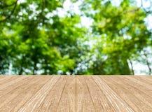 Κενό δωμάτιο προοπτικής με το θολωμένο πράσινο δέντρο δασικό και ξύλινο Στοκ φωτογραφία με δικαίωμα ελεύθερης χρήσης