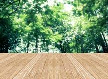 Κενό δωμάτιο προοπτικής με το θολωμένο πράσινο δέντρο δασικό και ξύλινο Στοκ εικόνα με δικαίωμα ελεύθερης χρήσης
