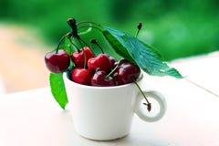 Κεράσια κεράσια ένα γλυκό λευκό πιάτων κεράσια φρέσκα Ώριμα κεράσια Στοκ Εικόνες
