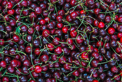 κεράσια σκούρο κόκκινο Στοκ Φωτογραφίες