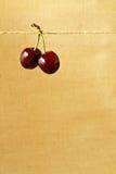κεράσια φρέσκα Στοκ φωτογραφία με δικαίωμα ελεύθερης χρήσης