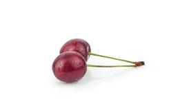 Κεράσι, δέντρο κερασιών, κόκκινα ώριμα κεράσια Στοκ Εικόνες