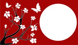 κεράσι Ιαπωνία ανθών Στοκ Φωτογραφία