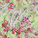 Κεράσι και ροδάκινο της Apple λουλουδιών Watercolor Άνευ ραφής σχέδιο χειροτεχνίας σε ένα πράσινο υπόβαθρο ελεύθερη απεικόνιση δικαιώματος