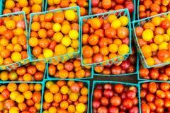 Κεράσι Tomatoss στοκ φωτογραφία με δικαίωμα ελεύθερης χρήσης