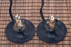 Κερί κεριών μελισσών στον εκλεκτής ποιότητας κάτοχο κεριών Στοκ φωτογραφία με δικαίωμα ελεύθερης χρήσης