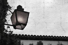 Κερί της Ανδαλουσίας Στοκ Εικόνες