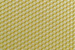 Κερί των κίτρινων κενών κυττάρων μελισσών Στοκ Φωτογραφία