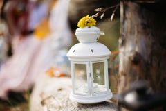 Κερί φθινοπώρου, ως υπόβαθρο στοκ φωτογραφία με δικαίωμα ελεύθερης χρήσης