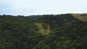 Κεραία, δασική κοιλάδα φτερών της Νέας Ζηλανδίας που οδηγεί στο φράγμα