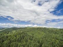 Κεραία ενός δάσους σε Argyll Στοκ Φωτογραφίες