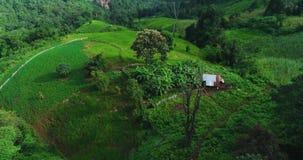 Κεραία: Λίγη ξύλινη καλύβα σε έναν πράσινο λόφο στα βουνά απόθεμα βίντεο