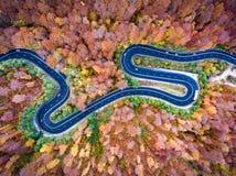 Κεραία που τυλίγει την κυρτή οδική γούρνα το δασικό γεια πέρασμα βουνών Στοκ φωτογραφία με δικαίωμα ελεύθερης χρήσης