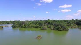 Κεραία της κονσέρβας φύσης στην κεντρική Φλώριδα απόθεμα βίντεο