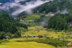 Κεραία Yotsuya κανένας τομέας ρυζιού χωριών και πεζουλιών Semmaida Στοκ Φωτογραφία