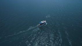 ΚΕΡΑΙΑ: Ένα κοπάδι των δελφινιών πηδά από το νερό δίπλα στη βάρκα Τα δελφίνια κολυμπούν μπροστά από τη βάρκα Δελφίνια φιλμ μικρού μήκους