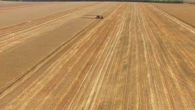 ΚΕΡΑΙΑ: Συνδυάστε τη θεριστική μηχανή στους γεωργικούς τομείς στο χρόνο συγκομιδών απόθεμα βίντεο