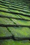 κεραμίδια πετρών στεγών Στοκ Εικόνα