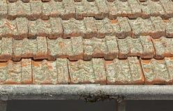 Κεραμίδια στεγών αργίλου που καλύπτονται στη λειχήνα με τις υδρορροές αποφλοίωσης στοκ εικόνες