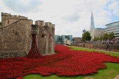 Κεραμικές παπαρούνες στον πύργο του Λονδίνου στοκ εικόνες