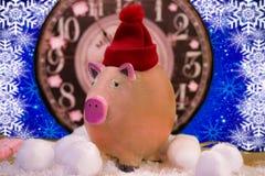 Κεραμικός διακοσμητικός χοίρος σε ένα καπέλο Χριστουγέννων στοκ εικόνες