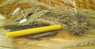 κεριά μελισσοκηρού στοκ εικόνα με δικαίωμα ελεύθερης χρήσης