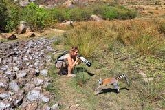 Κερκοπίθηκος τουριστών Στοκ φωτογραφίες με δικαίωμα ελεύθερης χρήσης